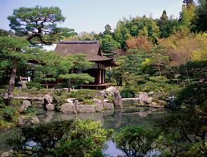 About Ryokan - garden