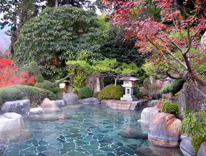 Ryokan Hot Spring